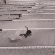 nuotata a fafalla