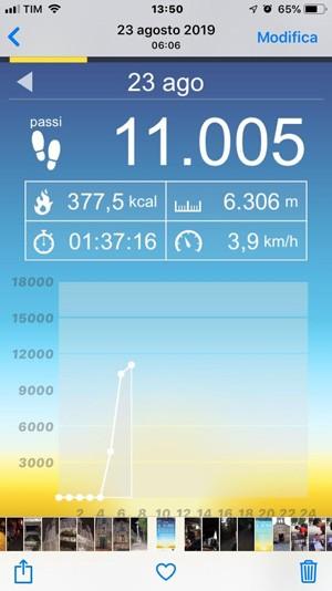 screen shot altimetrico