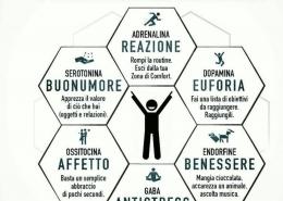 6 droghe della felicità
